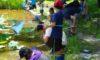 親子自然と遊ぼう会「夏の自然たからさがし」 8月6日(日) ※受付終了