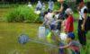 親子自然と遊ぼう会「夏の自然たからさがし」を開催しました