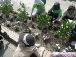 園芸福祉花壇③