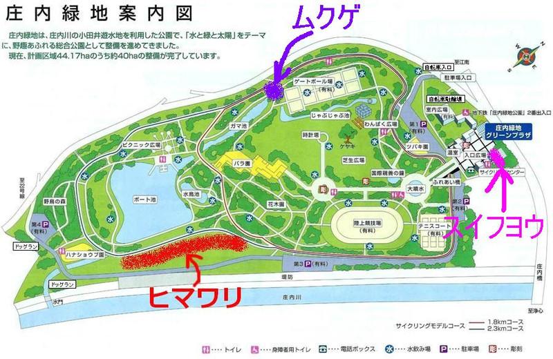 Syounai_map0819_2