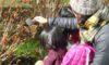 親子自然観察会「冬の自然たからさがし」を開催しました