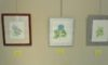 「ボタニカルアート展」が明日から始まります