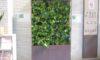 壁面緑化を設置しました