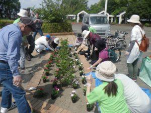 園芸福祉花壇②