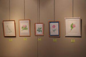 ボタニカルアート展②