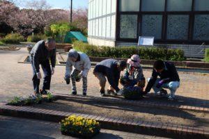 1129園芸福祉花壇②