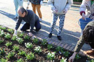1129園芸福祉花壇⑨