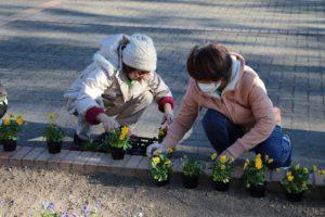 1129園芸福祉花壇③