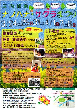 Nanohanasakura_5