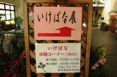 Ikebana4_2